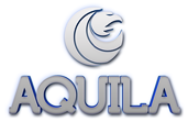 Logo 3d aquila 01 white blue 171